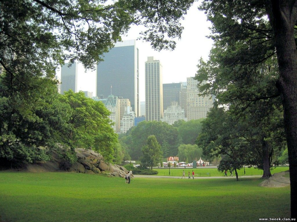 Central-park-New-York-City-Wallpaper-
